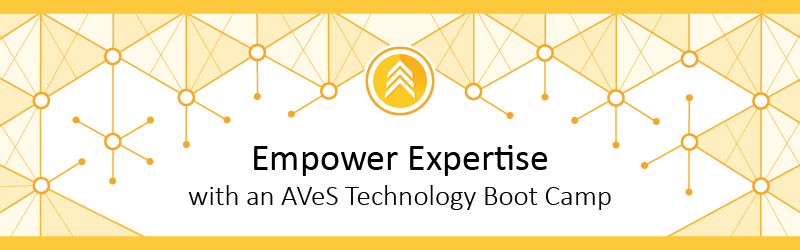 Empower expertise with an AVeS Technology Boot Camp in 2015